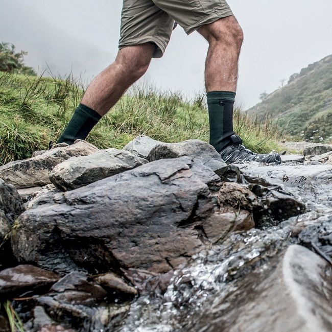 bcbe8e4aaa3 Sealskinz Hiking Waterproof Socks - Knee